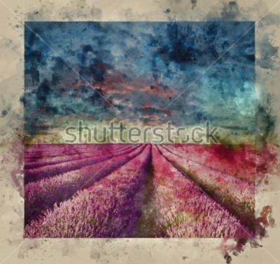 Quadro Pintura em aquarela digital de pôr do sol de verão deslumbrante sobre paisagem de campo de lavanda