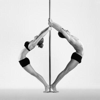Quadro Pole dance