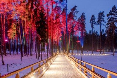Quadro Ponte de madeira no parque da floresta. Noite luzes multicoloridas.