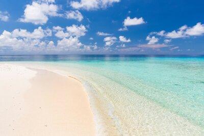 Quadro Praia bonita do oceano em Maldives