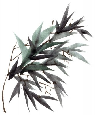 Quadro Ramo de folhas de bambu em aquarela