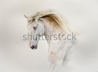 Quadro retrato de cavalo lusitano aquarela