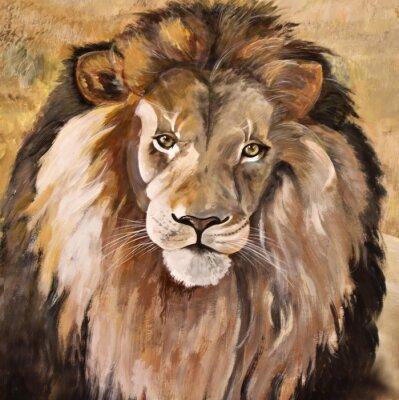 Quadro Retrato de enorme leão bonito Africano masculino