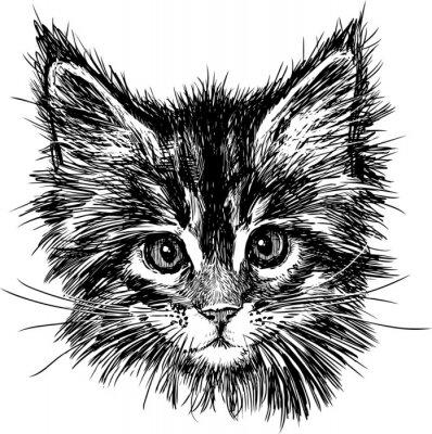 Quadro retrato do gato