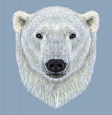 Quadro Retrato ilustrado do urso polar