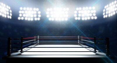 Quadro Ringue de boxe na Arena