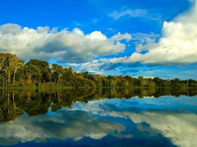 Quadro Rio Amazonas