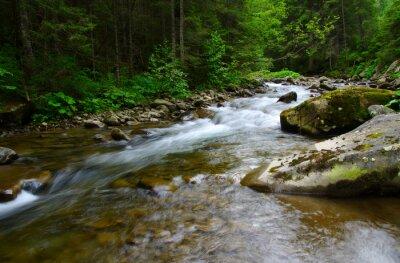 Quadro Rio de montanha
