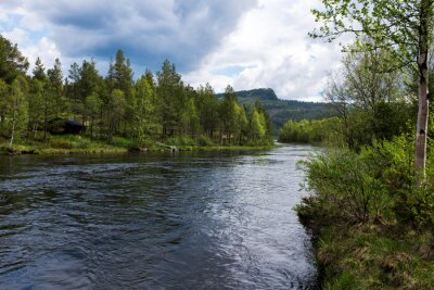Quadro Rio na Noruega