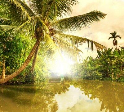 Quadro Rio tropical