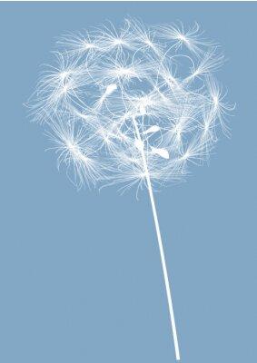 Quadro Rodada única dandelion silhueta branca