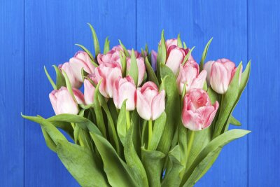 Quadro Rosa, tulips, ramalhete, closeup