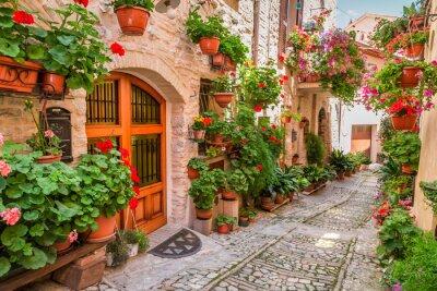 Quadro Rua em pequena cidade na Itália no verão, Umbria