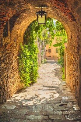 Quadro Ruas velhas de vegetação uma cidade medieval da Toscana.