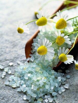 Quadro sal do mar com ervas