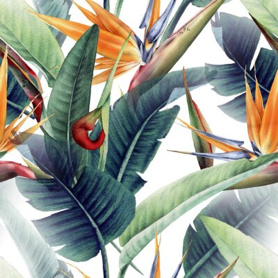 Quadro Seamless floral pattern with tropical leaves and strelitzia on light background. Template design for textiles, interior, clothes, wallpaper. Watercolor illustration