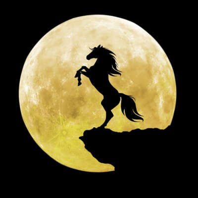 Quadro Silhueta cavalo preto