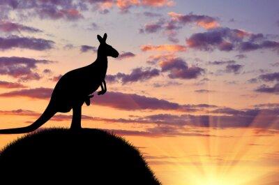 Quadro Silhueta de um canguru com um bebê