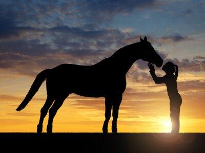 Quadro Silhueta de uma menina que dá um cavalo beijo no por do sol