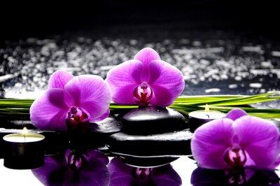 Quadro Spa vida ainda com conjunto de orquídea rosa e reflexão pedras