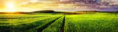 Quadro Sunset panorama paisagem rural