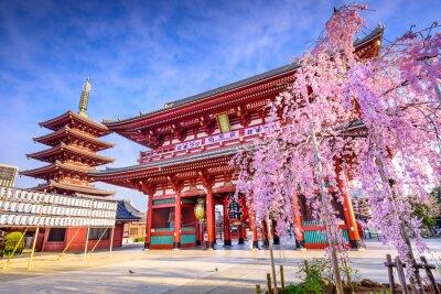 Quadro Templo de Sensoji em Asakusa, Tóquio, Japão