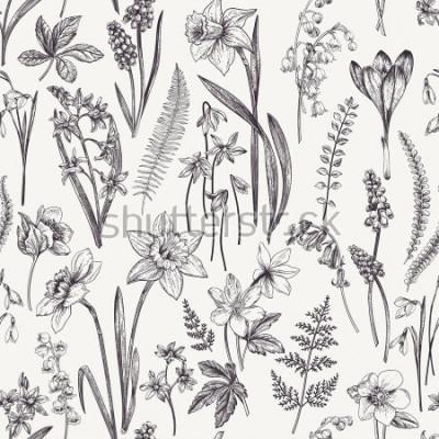Quadro Teste padrão floral sem costura vintage. Flores da primavera e ervas. Ilustração botânica. Narciso, lírio do vale, heléboro, floco de neve, açafrão. Gravação. Preto e branco.
