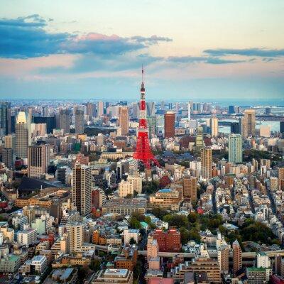 Quadro Tóquio vista da cidade visível no horizonte