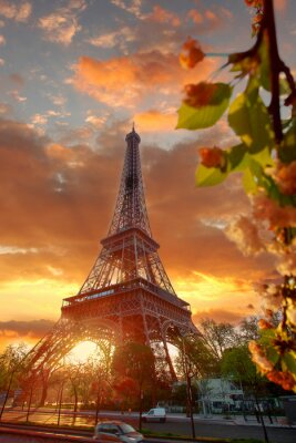 Quadro Torre Eiffel durante bela manhã de primavera em Paris, França
