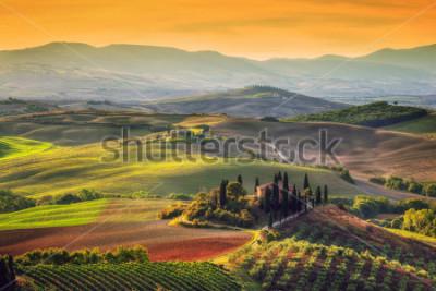 Quadro Toscana paisagem ao nascer do sol. Típico para a casa da fazenda toscana região, colinas, vinha. Itália