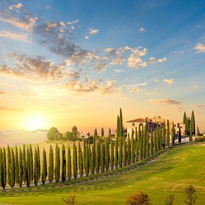 Quadro Toscana, pôr do sol - campo, estrada, árvores, casa
