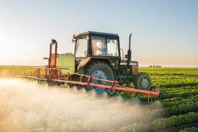 Quadro Tractor pulverizando soja