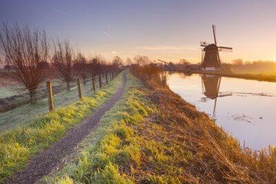 Quadro Tradicional, holandês, moinho de vento, Países Baixos, amanhecer