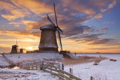 Quadro Tradicional, holandês, moinhos de vento, inverno, amanhecer