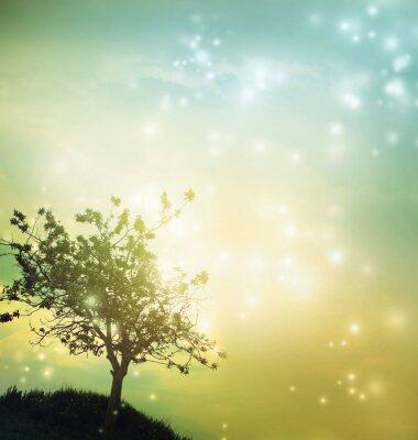Quadro Tree silhouette at twilight