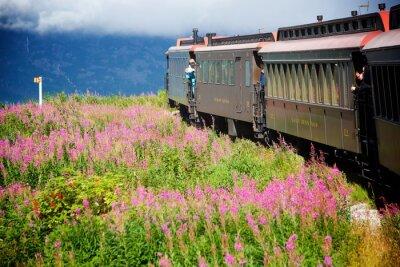 Quadro Trens do Alasca