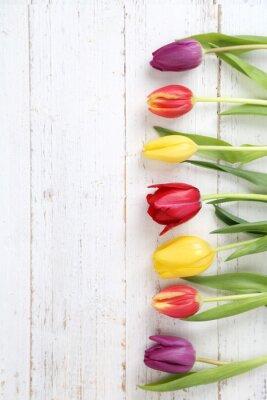 Quadro tulipas fundo