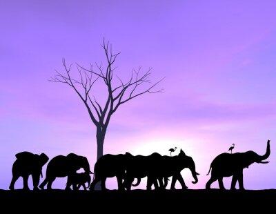 Quadro Um elefante conduz a maneira como os outros seguem com um por do sol ou nascer do sol roxo.
