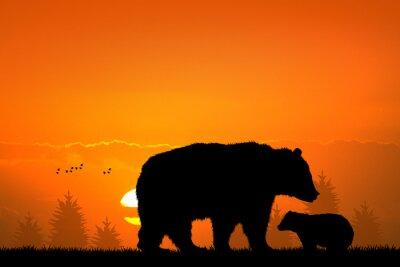 Quadro urso pardo e urso do bebê na floresta