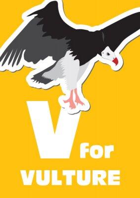 Quadro V para o Vulture, um alfabeto animal para as crianças