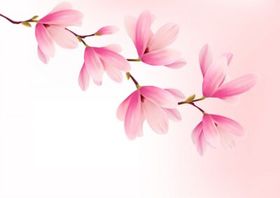 Quadro Valentine background with pink flowers. Vector.