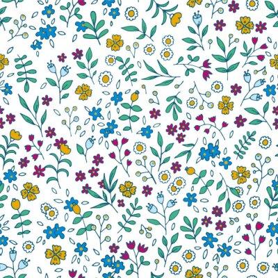 Quadro Vector padrão floral colorido sem costura