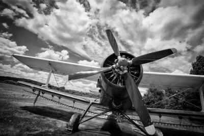 Quadro Velho, avião, campo, pretas, branca