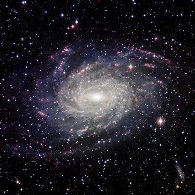 Quadro Ver Galaxy sistema isolado Elementos desta imagem fornecida por NASA