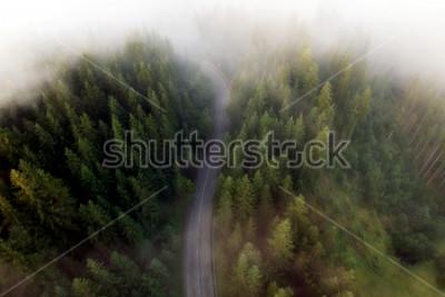 Quadro Verão, vista, de, a, estrada montanha