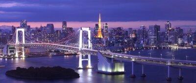 Quadro view of Tokyo Bay , Rainbow bridge and Tokyo Tower landmark