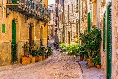 Quadro Vista de uma rua romântica de uma antiga vila mediterrânica em Espanha
