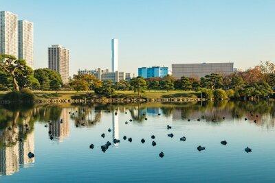 Quadro Vista, tokyo, cityscape, parque