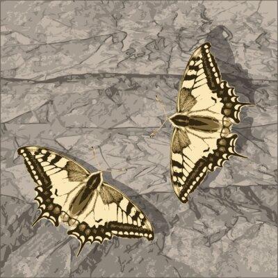 Quadro Voando borboleta sobre a parede do grunge.