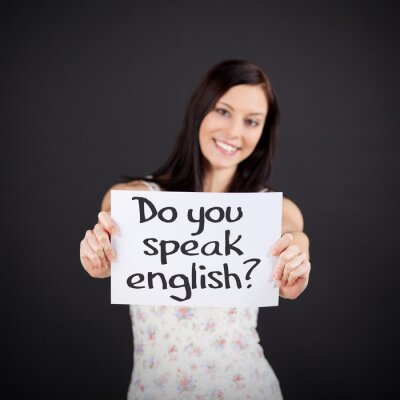 Quadro Você fala Inglês?